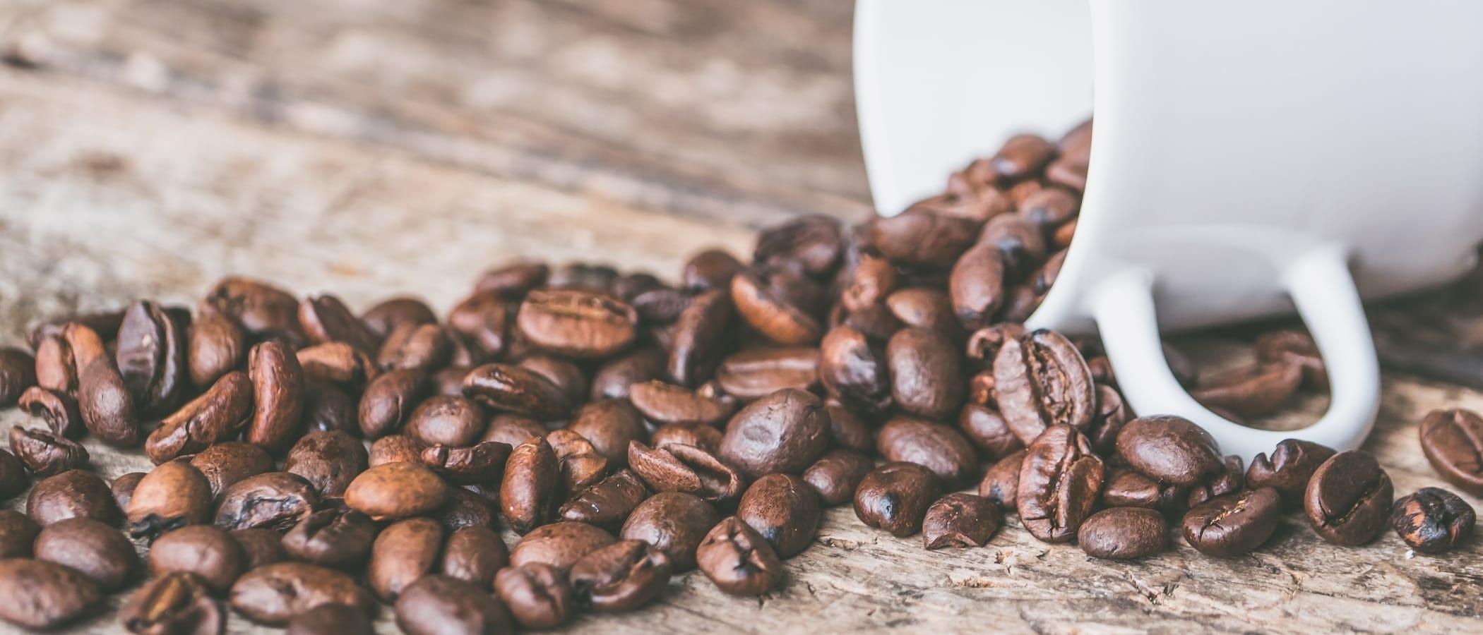 Koffein: Wachmacher – Genuss – Sucht